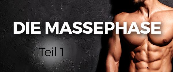 Die Massephase Teil 1